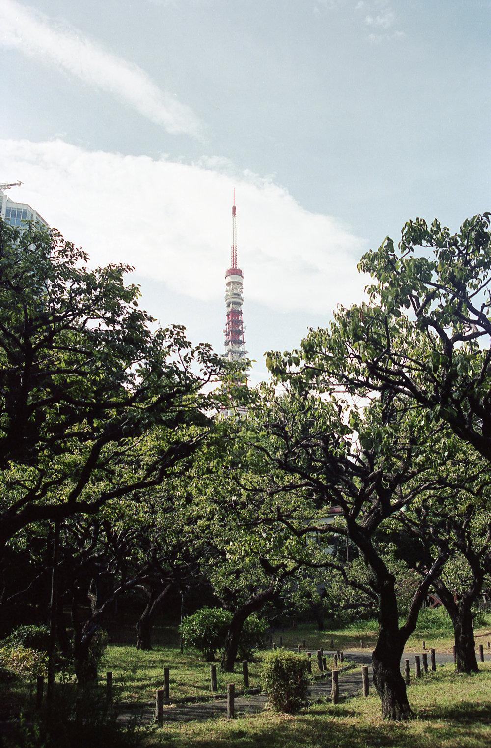 20180824_Tokyo2_023edit.jpg
