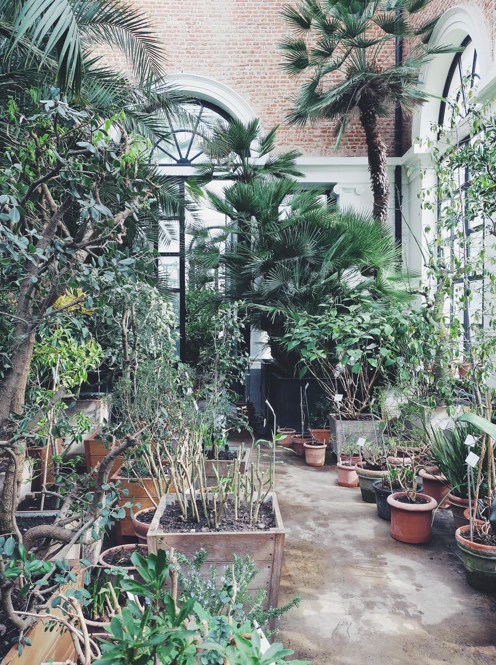 Botanical Garden, Kapucijnenvoer 30
