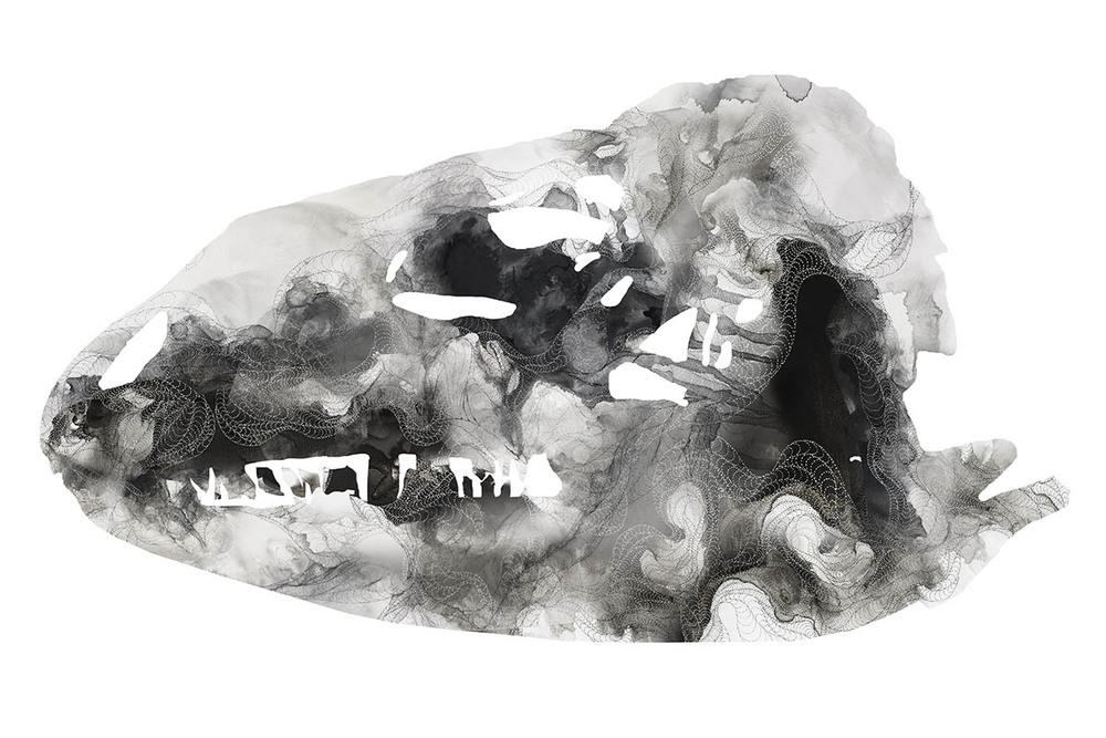 Bones iguana, mixedmedia, 2013