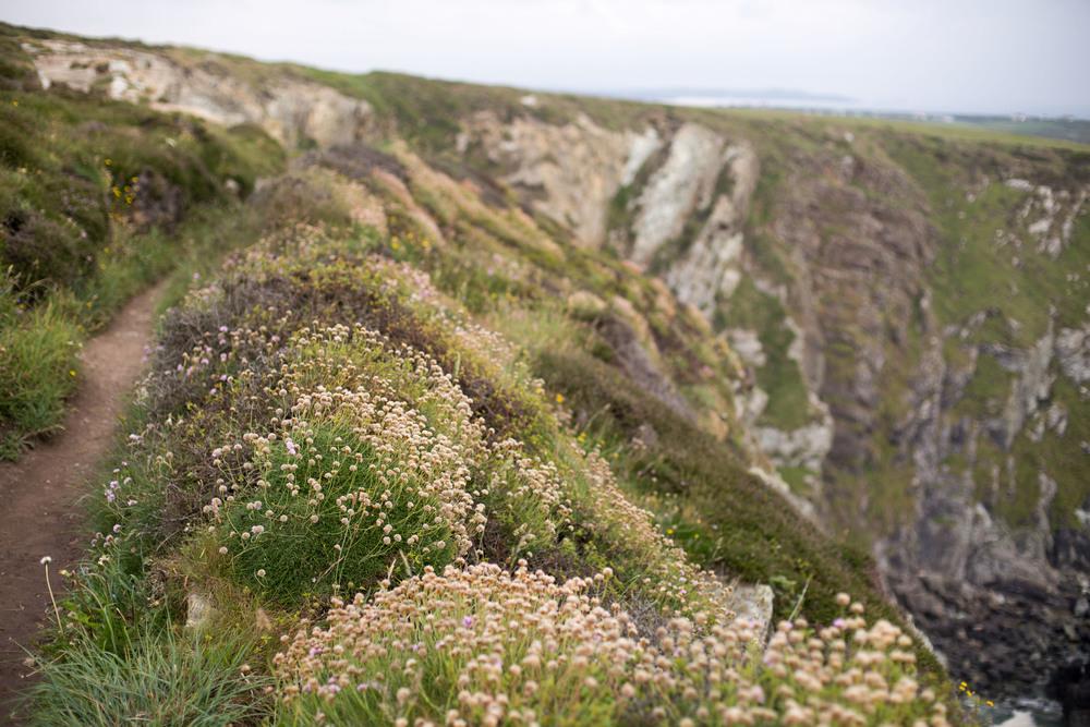 Anglesey '16-15.jpg