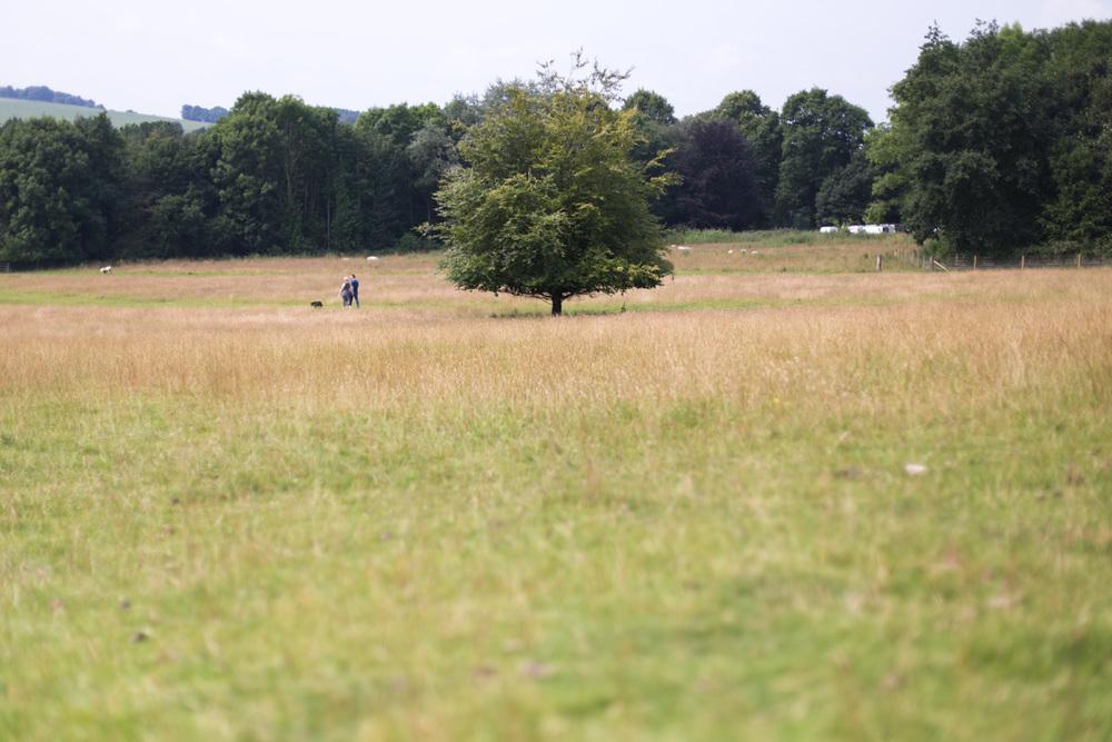 Yorkshire Sculpture Park-2.jpg