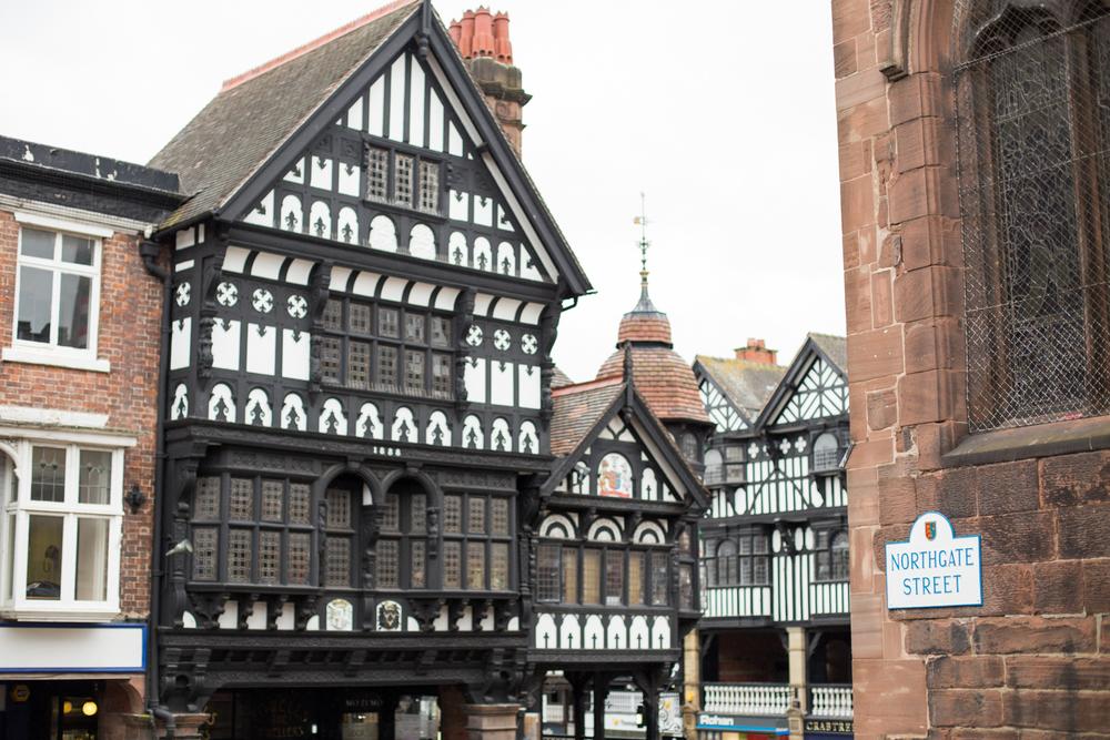 Chester-1169.jpg