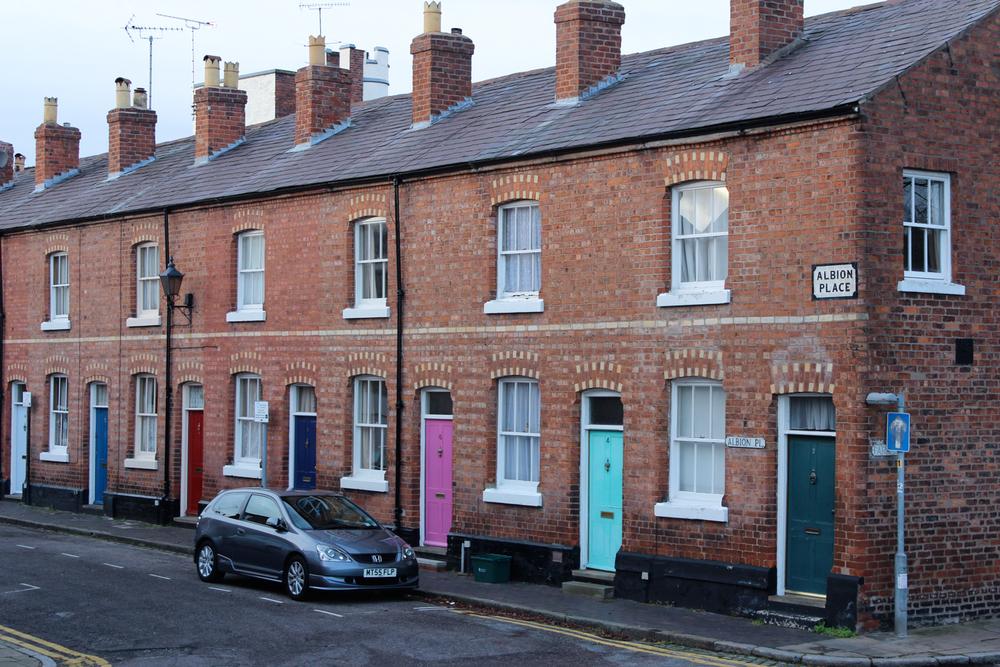 Chester-0306.jpg