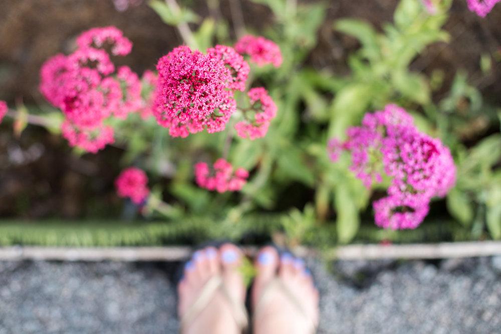Feet-0452.jpg