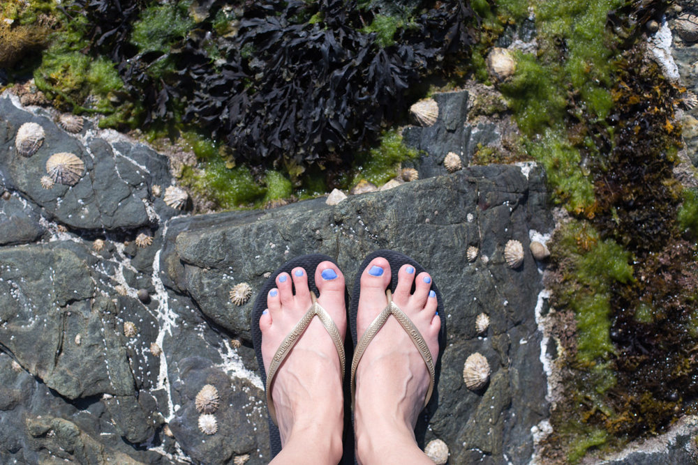 Feet-0729.jpg