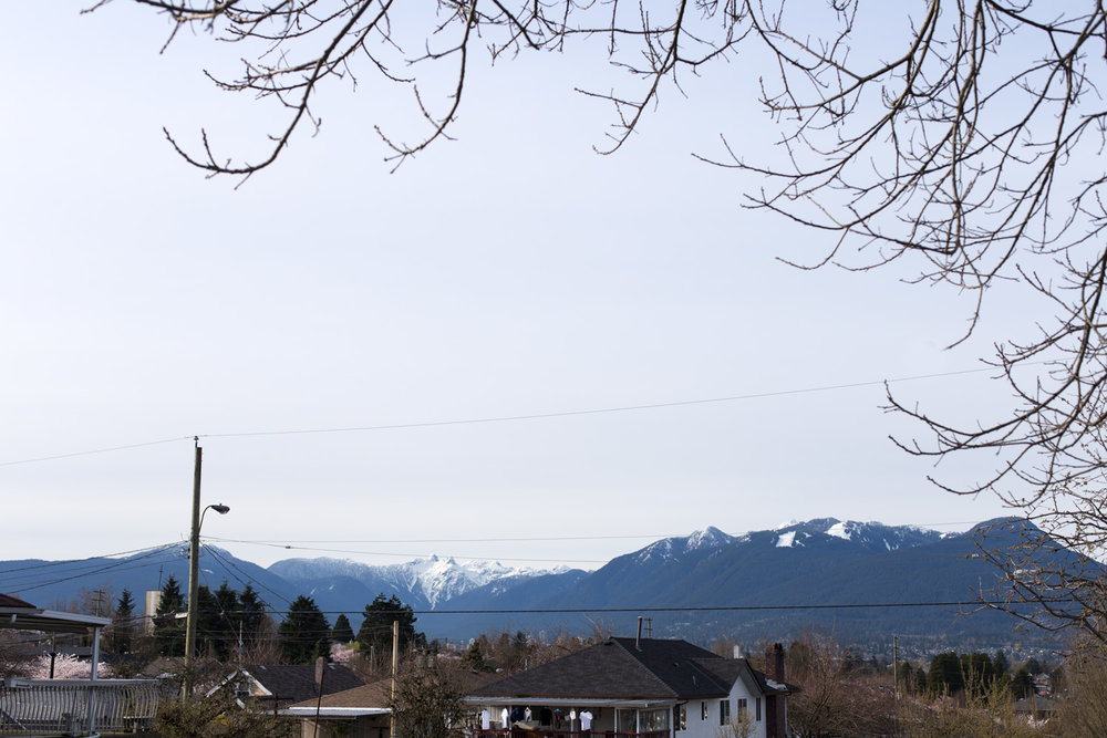 Spring blog-6640.jpg