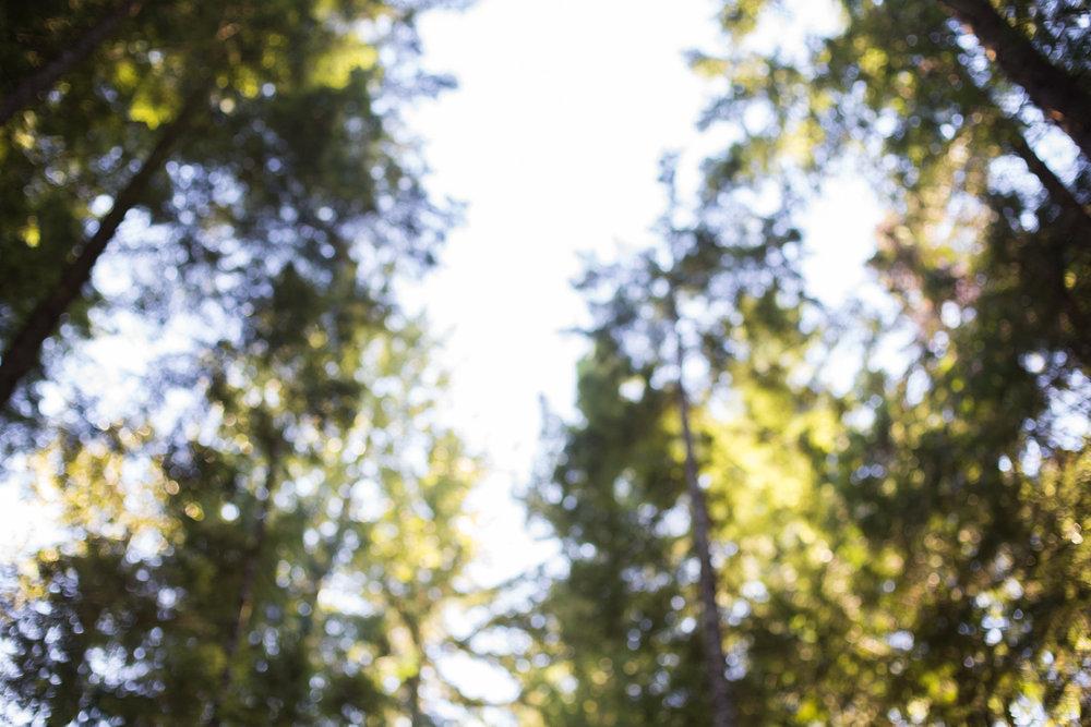 Squamish-Whistler-7500.jpg