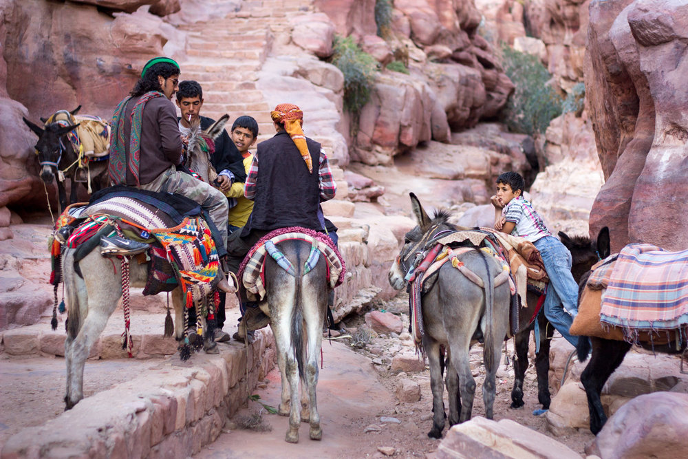 Bedouin tour-guides take a break with their donkeys • Petra, Jordan •