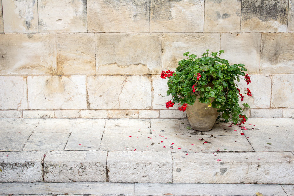 Details in Jerusalem's Old City • Jerusalem, Israel •