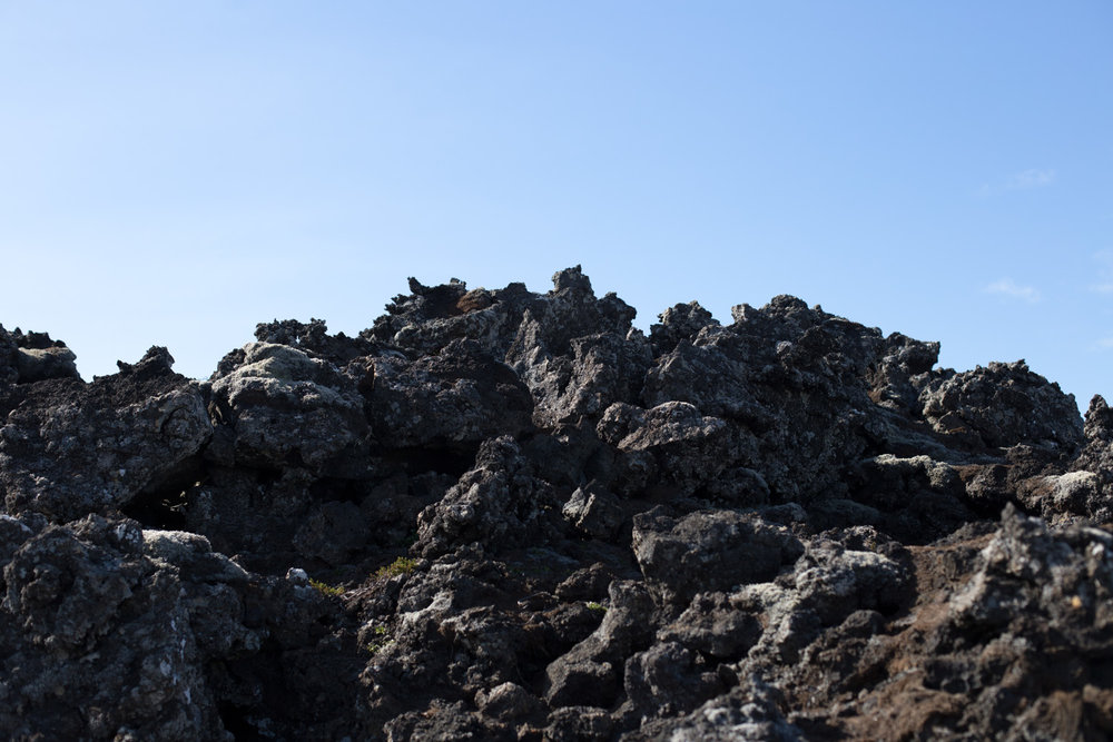 Iceland blog-8257.jpg