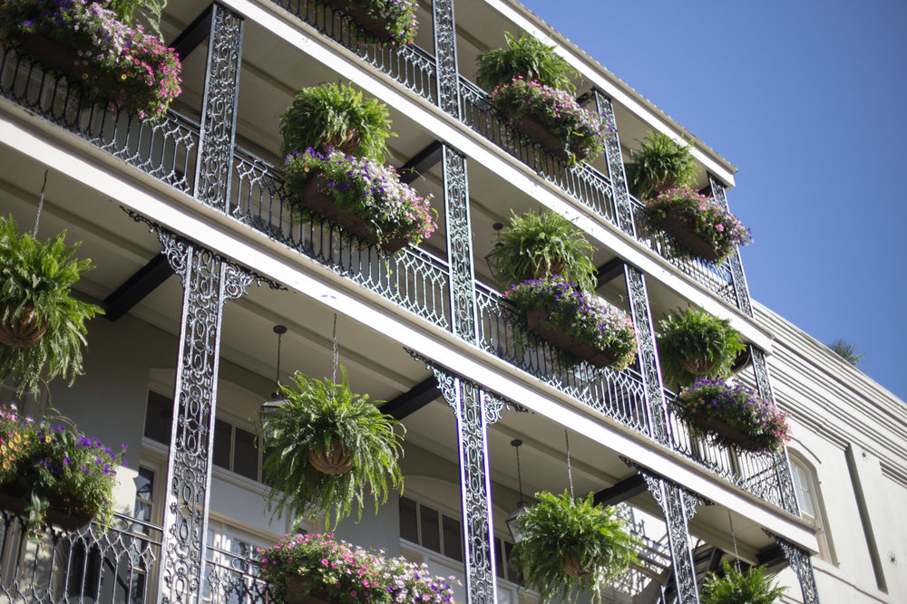 New Orleans blog-2346.jpg