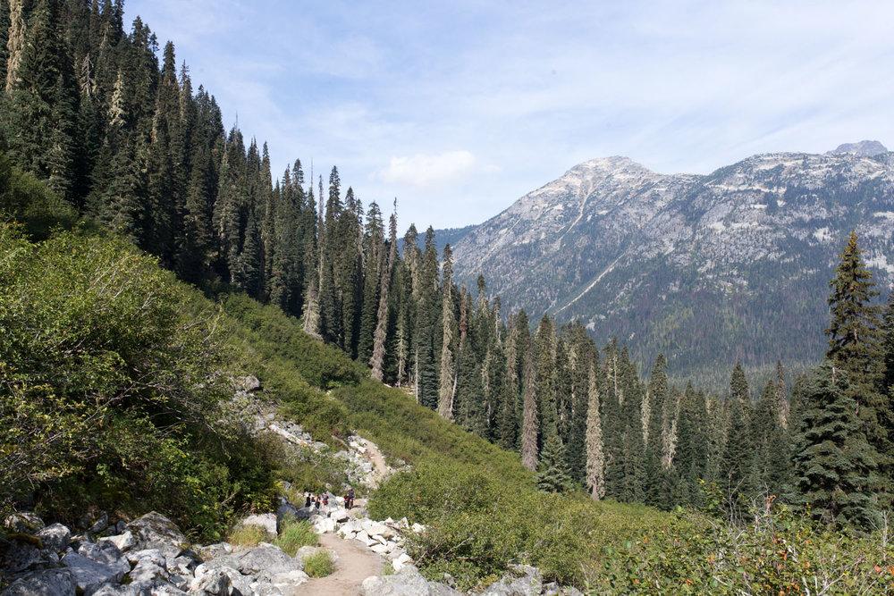 Joffre Lake hike-4071.jpg