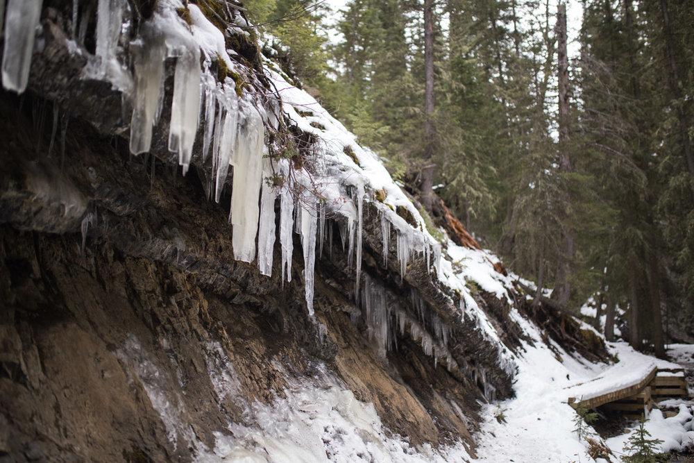 Banff blog-4374.jpg