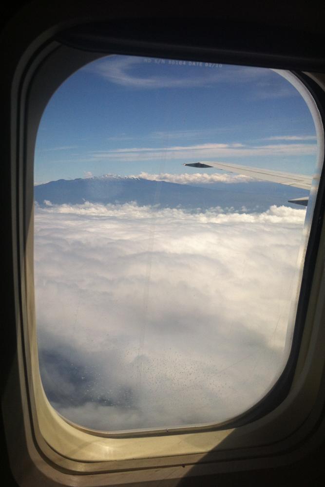Plane Windows blog-6186.jpg