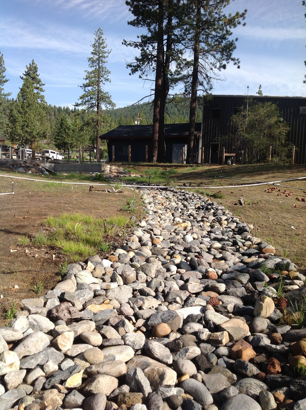 AFTER: Restored stream channel for natural stormwater conveyance. Photo by Suzanne Wilkins.