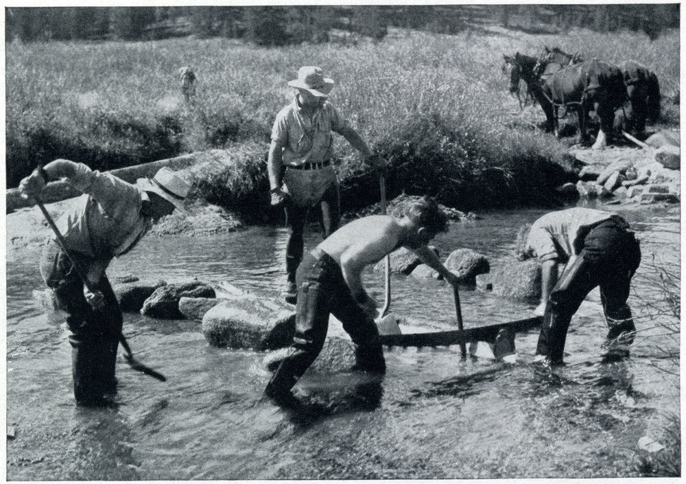 An image from the Forest Service publication The CCC and Wildlife showing enrollees installing stream improvements in Montana. Remote, often anonymous work like this in the interior West was a common feature of the CCC. From author's collection.