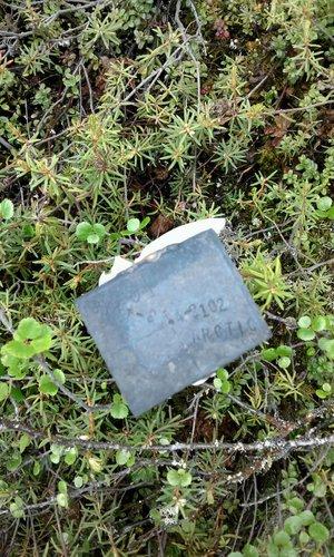 Brass Rectangle Mineral Survey.