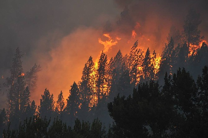 Figure 3 - Clearwater Complex fire, 2015. Photo credit: Idaho County Free Press