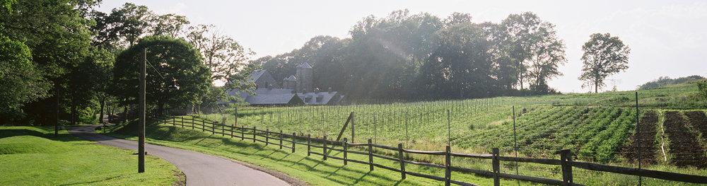 stone-barns_2.jpg