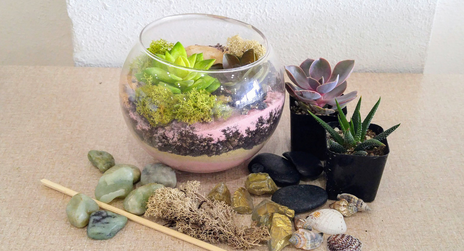 Succulent Terrarium Workshop Assembly Craft Diy Workshops