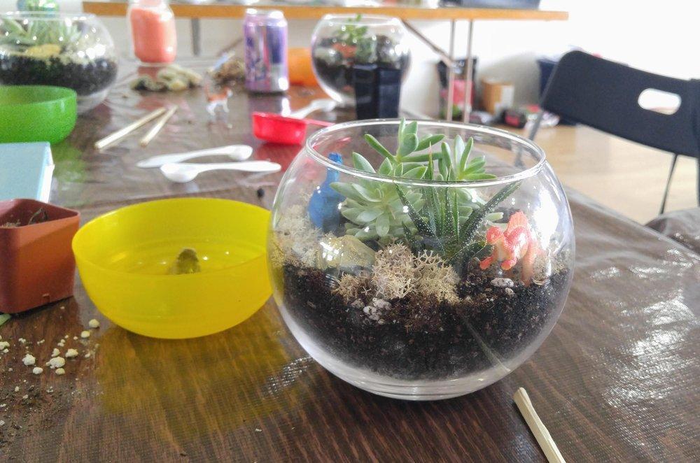 Succulent Terrarium Workshop Assembly Craft Diy Workshops