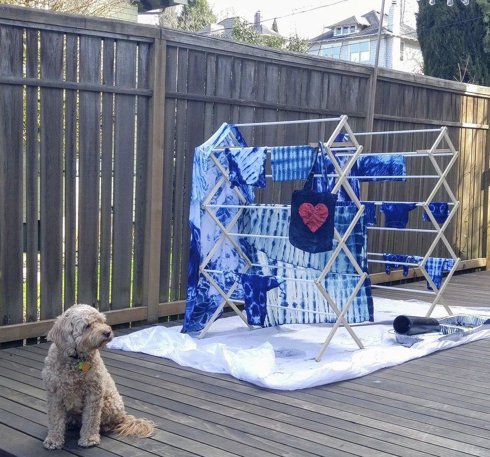A backyard baby shower featuring shibori & indigo dyeing!