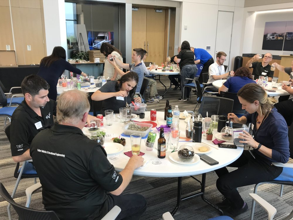 A corporate team-building event featuring succulent terrariums for over forty people