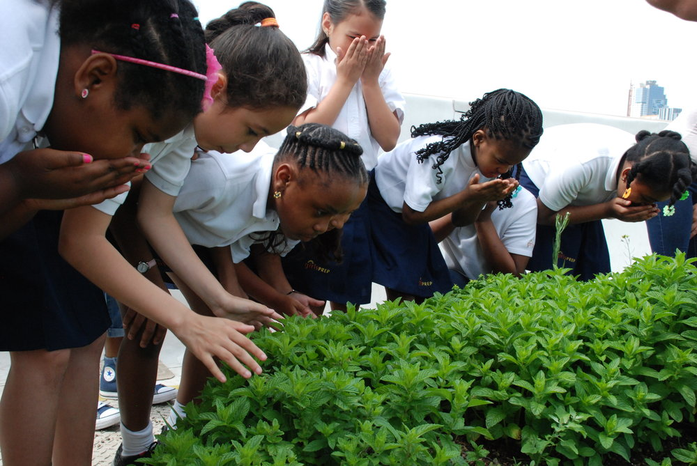 Girls Prep: Students at Girls Prep Lower East Side Elementary tour Brooklyn Grange Farm as part of Bubble GROWS.