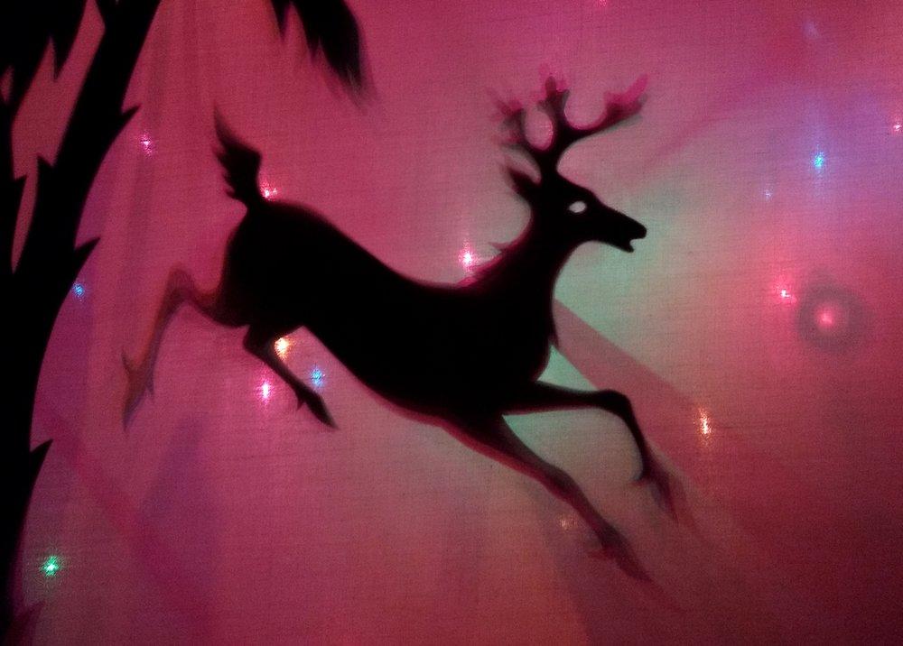 My reindeer.jpg