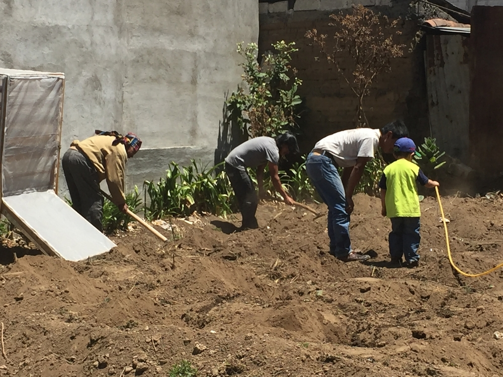 Working on the milpa corn field, Escuela Ki'kotemal, Guatemala
