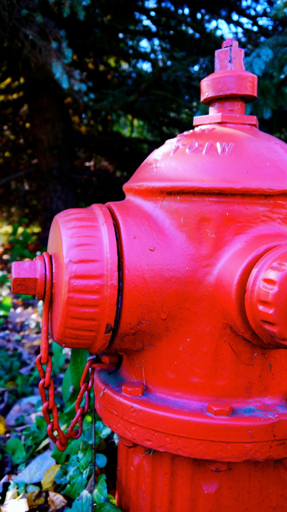 p1000451-fire-hydrant.jpg