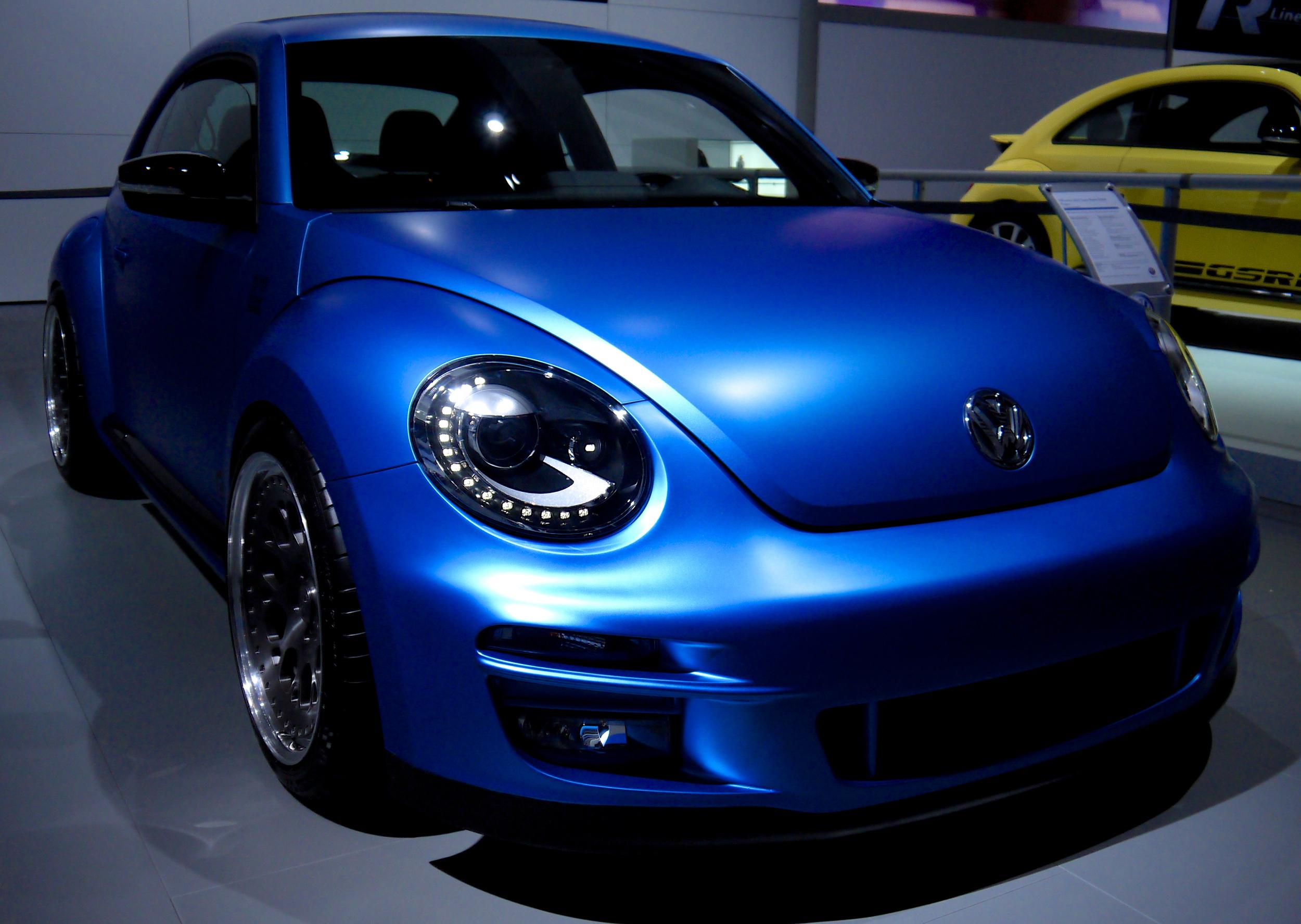 P1030568 Beetle