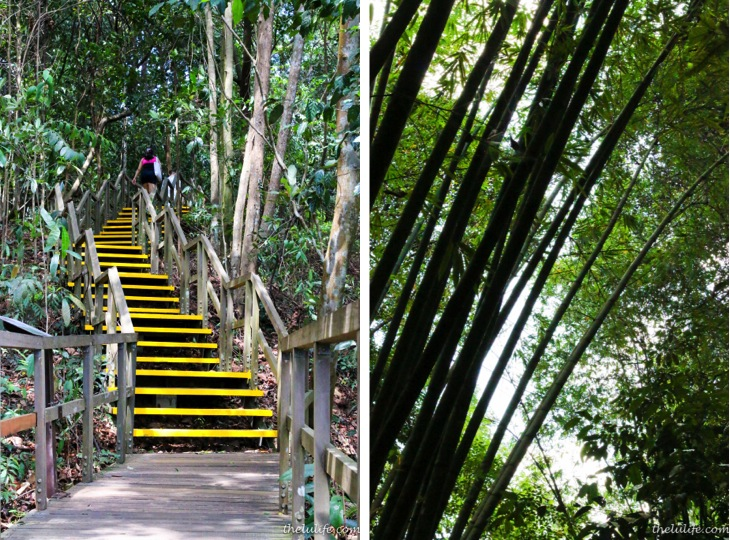 Left: The stairs Right: Bamboo