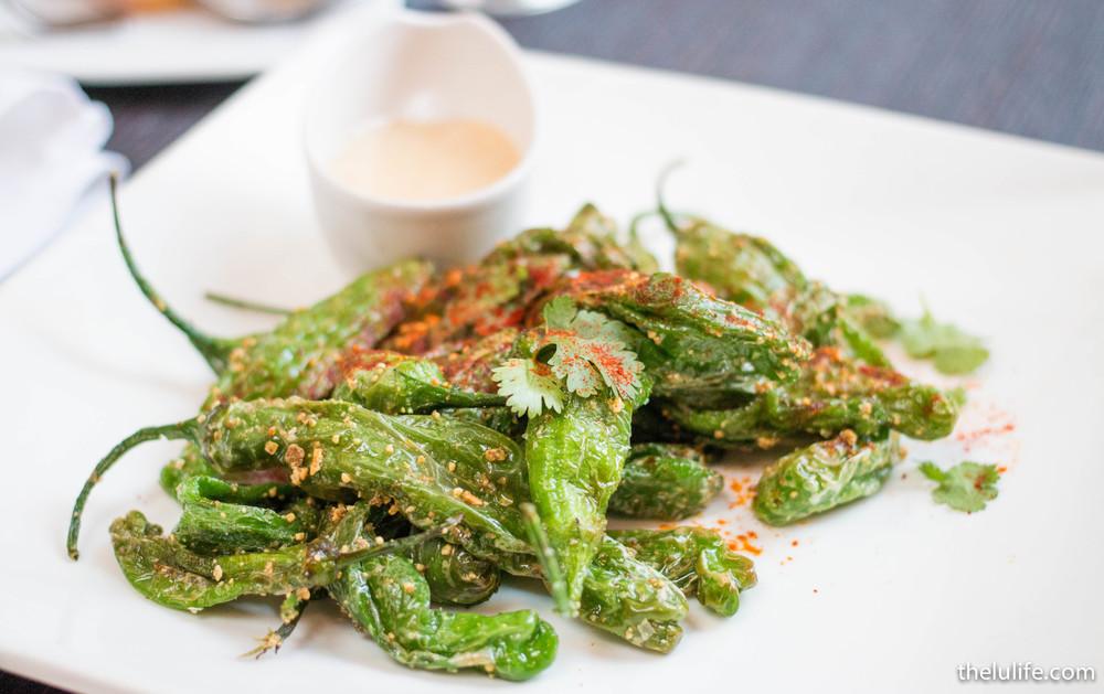 Shishito peppers - spiced pepitas, gorgonzola maple fondue, smoked paprika