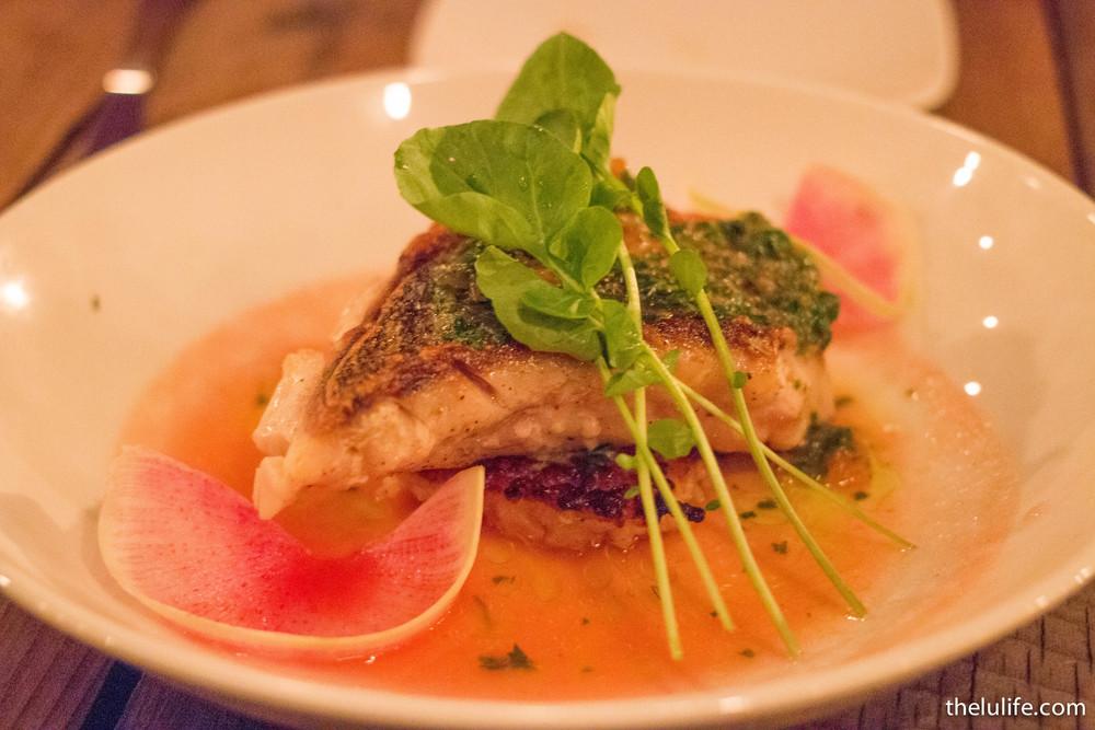 Mojo rockfish