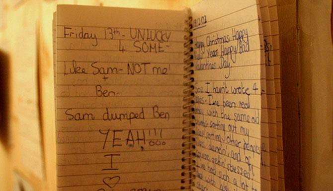 Dear_diary_2.jpg