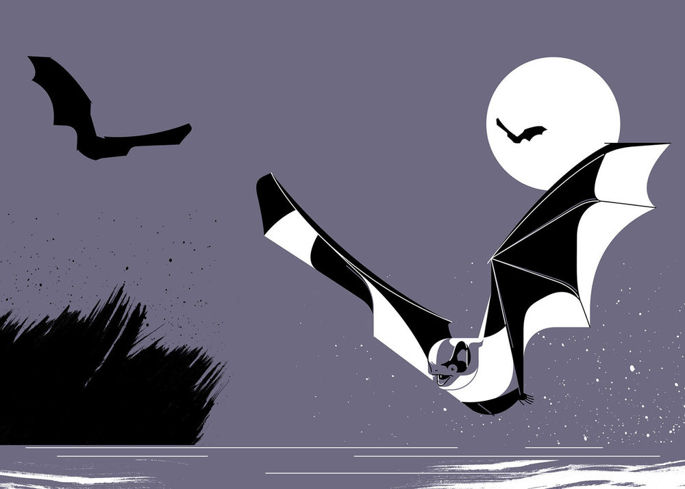 Water Bat, Waterfront Issue 2