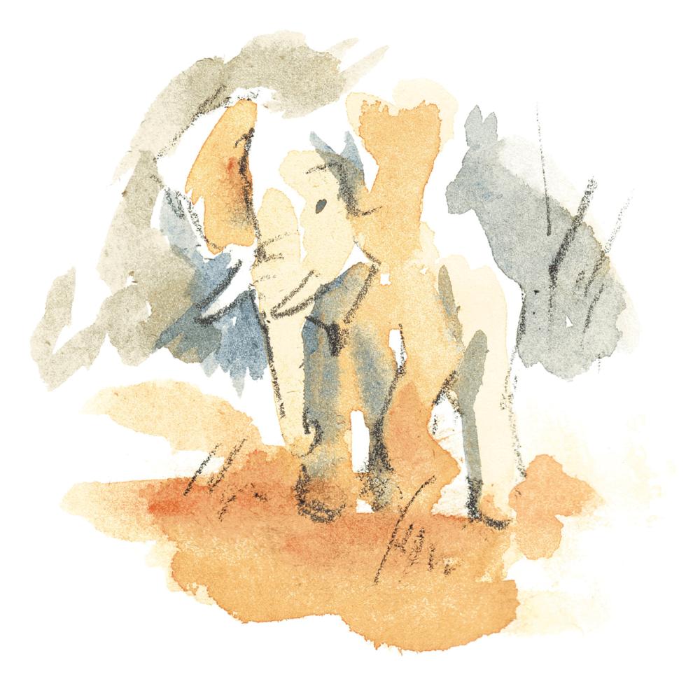 wheretheanimalsgo_elephant.png