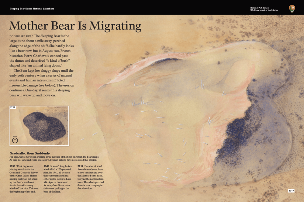 Mother Bear is Migrating