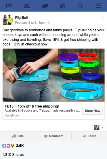 FlipBelt Facebook Ad Photoshop Edits FlashStock