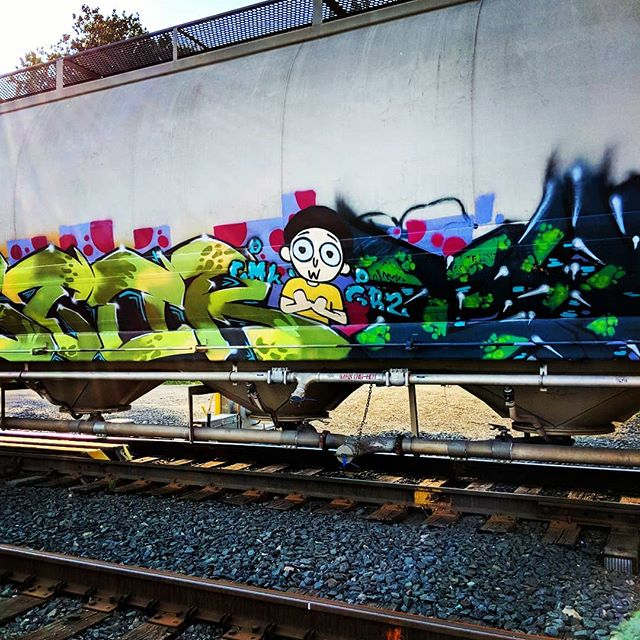 Get schwifty. #trainart #traingraffiti #rickandmorty #mysaintpaul #train #graffiti #adultswim #schwifty @rickandmorty