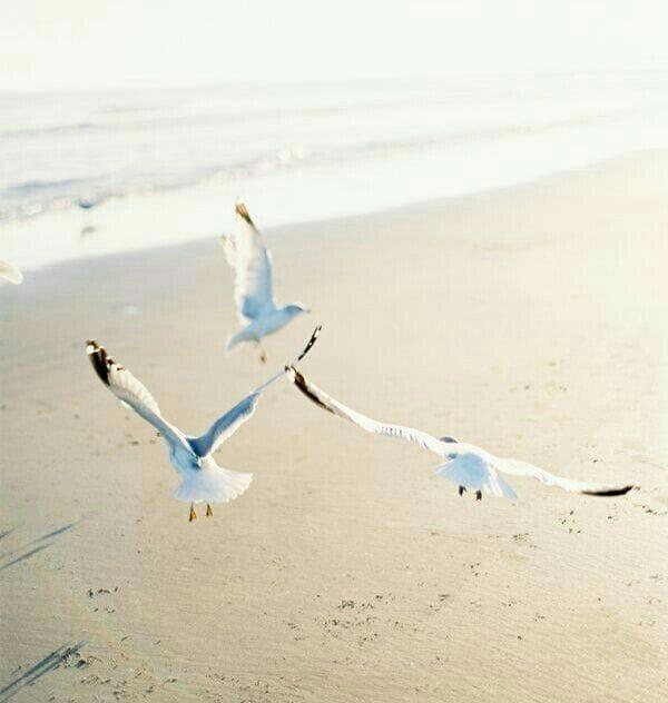 Vacanza Mindfulness al mare
