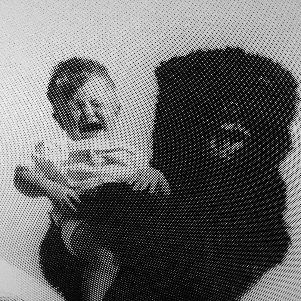 ste e l'orso