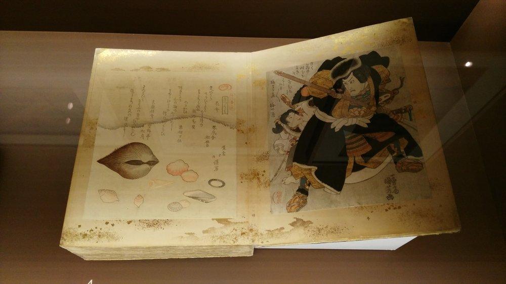 museo-thyssen-bornemisza-libro-japones.jpg