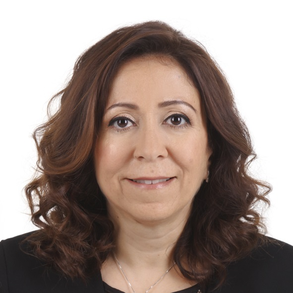 MANAL EL MASRY - Board MemberBusiness Development Director for STEM Revolution, Middle East | Dubai, UAE