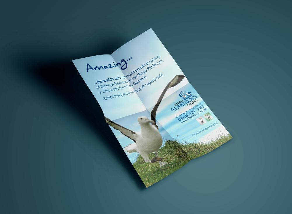 Albatros Poster-min.png