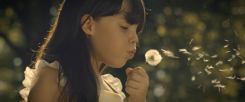 DANDELION ºº SHORT FILM