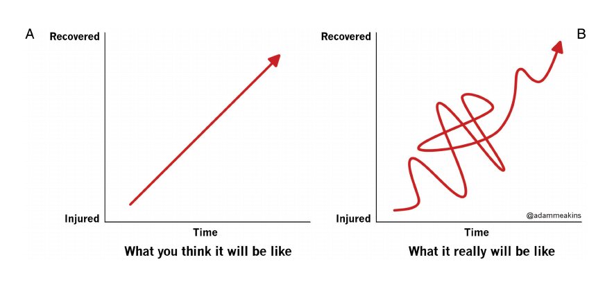 Road to recovery graph from Adam Meakins. British Journal of Sports Physio 2015; 49:494.