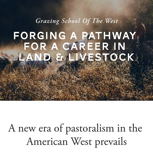 Go check out our new Grazing School of the West website! Link in bio.  There you can learn more about the project, download and view our report and webinar sharing our takeaways from visiting the shepherding schools in Europe, and how to support or get involved in the development of the Grazing School of the West.  Pastoralism Prevails and happy equinox!  #grazingschoolofthewest
