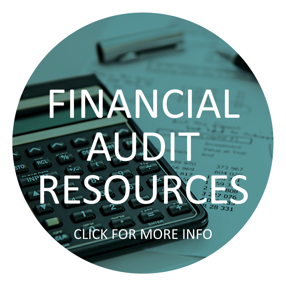 Financial-Audit-Resources-Button.jpg